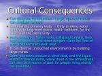 cultural consequences