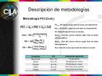 descripci n de metodolog as1