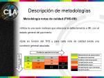 descripci n de metodolog as3