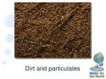 dirt and particulates