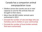 canada has a companion animal overpopulation issue