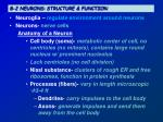 8 2 neurons structure function
