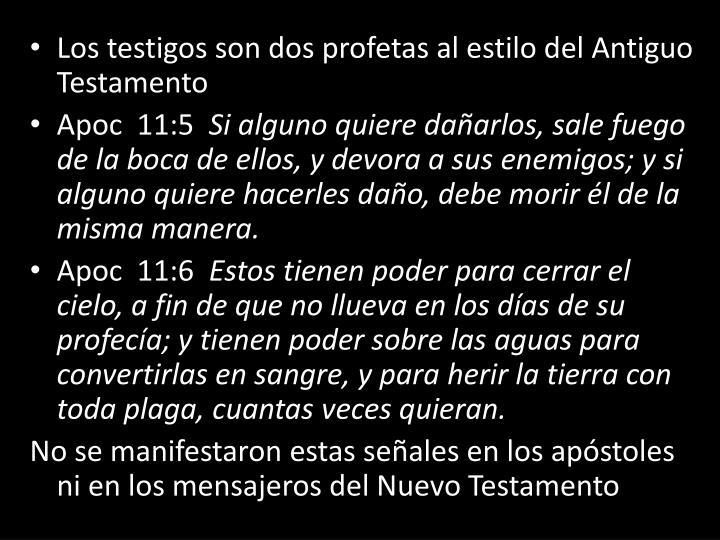 Los testigos son dos profetas al estilo del Antiguo Testamento