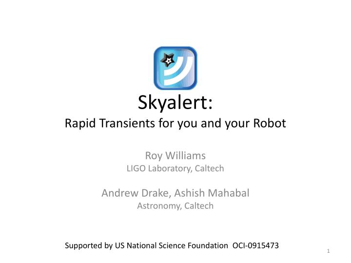 skyalert rapid transients for you and your robot n.