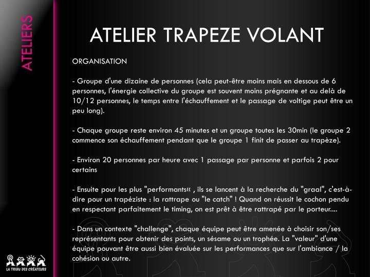 Atelier trapeze volant2
