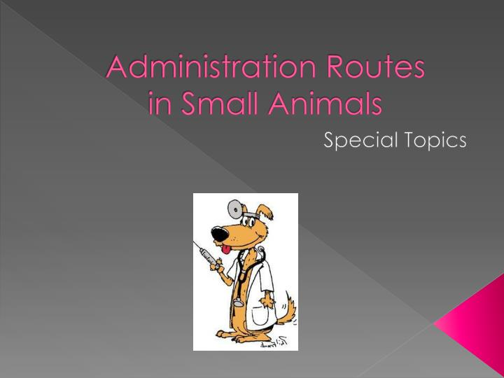 administration routes in small animals n.