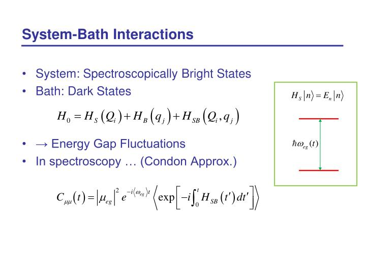 System bath interactions