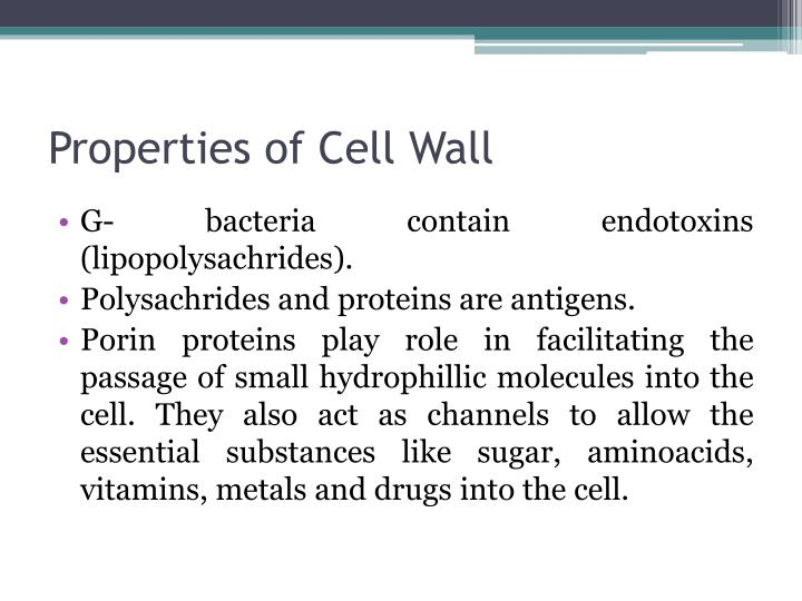 Properties of Cell Wall