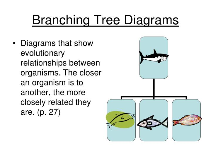 Ppt Classification Powerpoint Presentation Id2282399