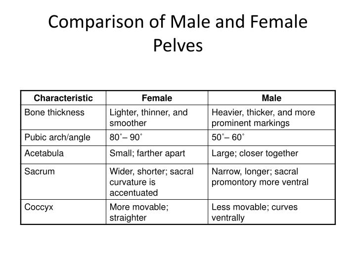 Comparison of Male and Female