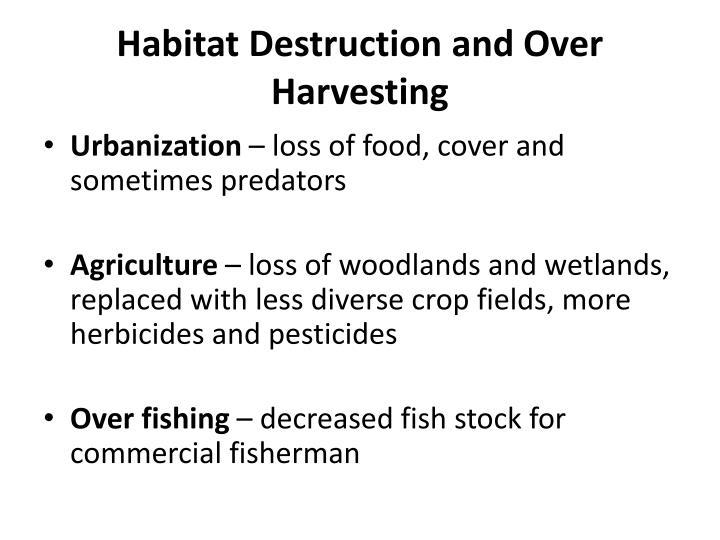 Habitat Destruction and Over Harvesting