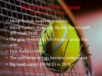 evolution of tennis racket the seventies the changes