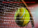 what do you know about tennis racket