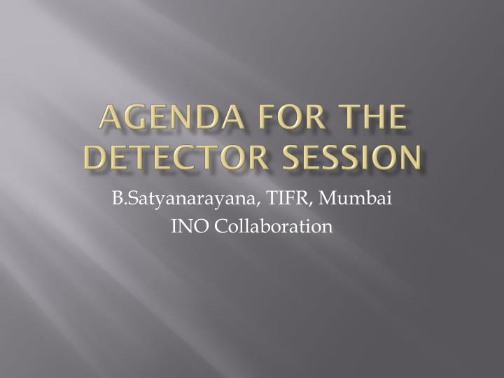 agenda for the detector session n.