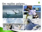 em regi es polares
