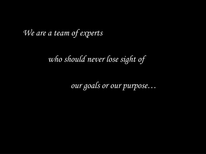 We are a team of experts