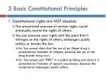 3 basic constitutional principles