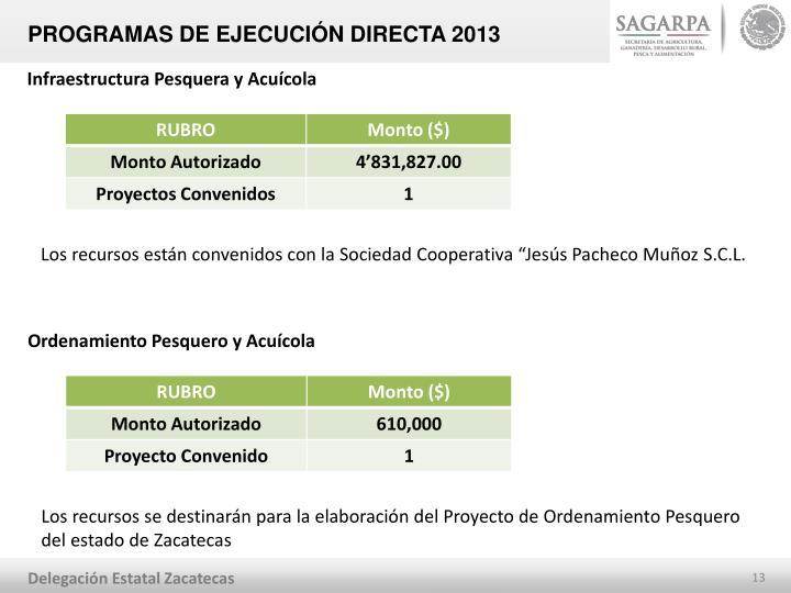 PROGRAMAS DE EJECUCIÓN DIRECTA 2013