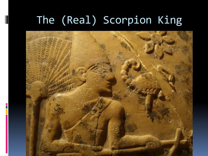 The real scorpion king