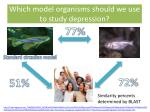 which model organisms should we use to study depression