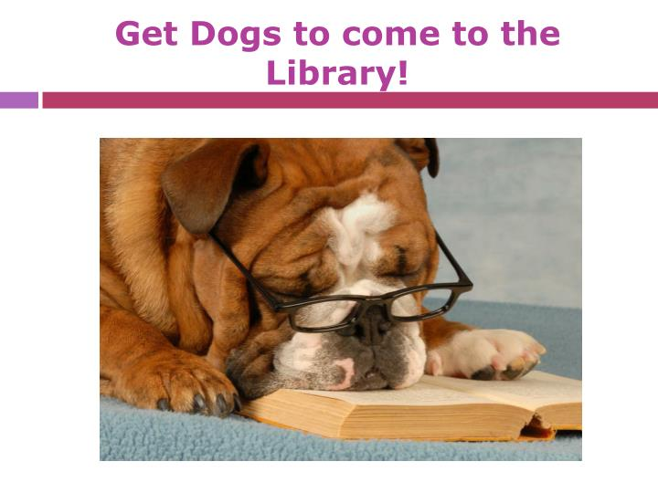 Get Dogs to come to the Library!