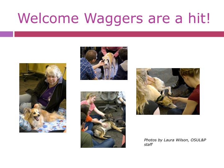 Welcome Waggers are a hit!