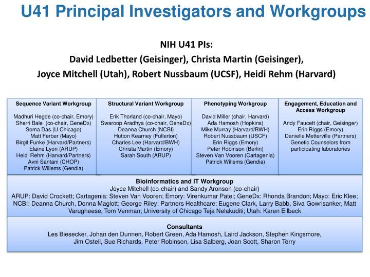 U41 Principal Investigators and Workgroups