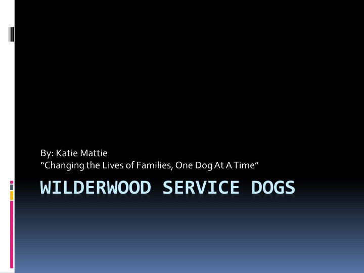 by katie mattie changing the lives of families one dog at a time n.