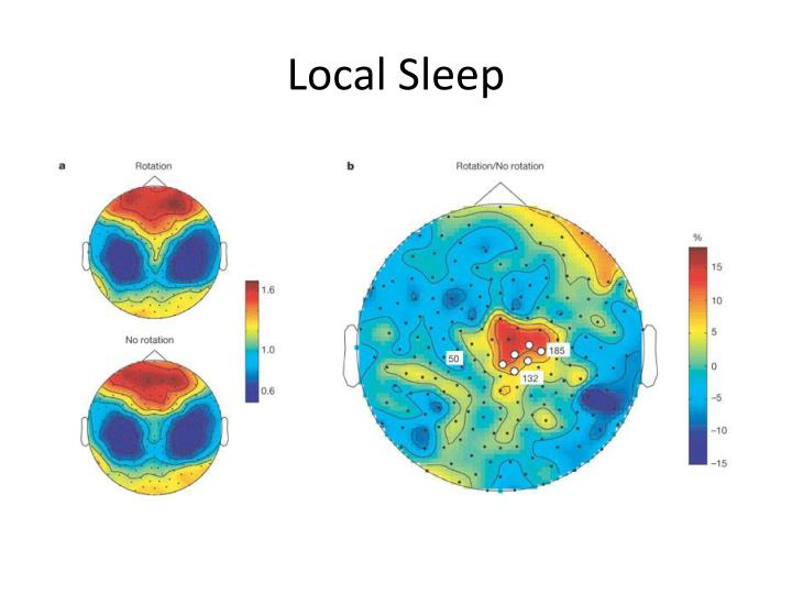Local Sleep