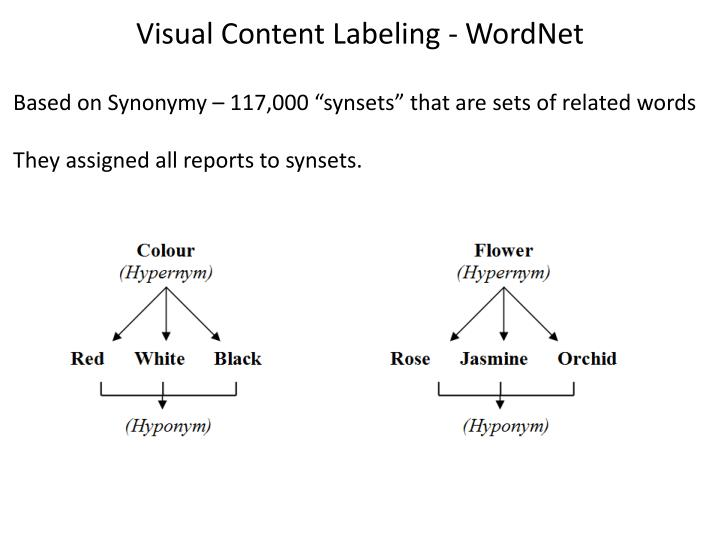 Visual Content Labeling -
