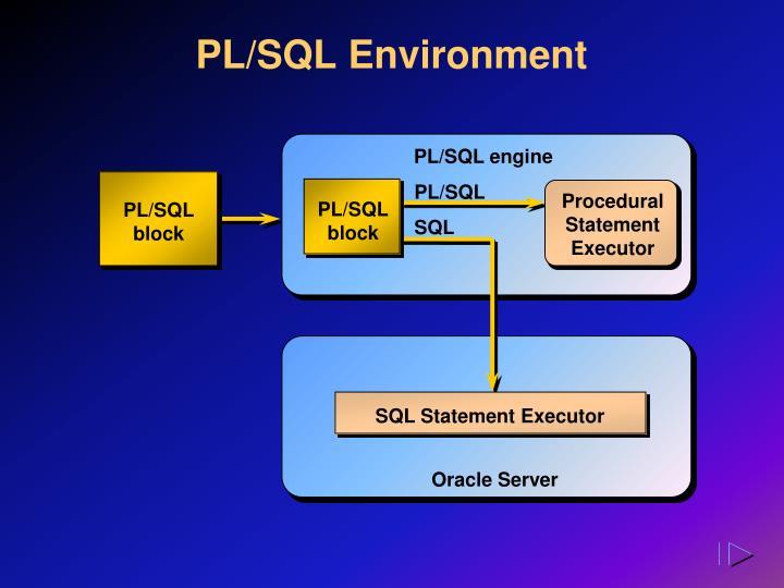 PL/SQL Environment