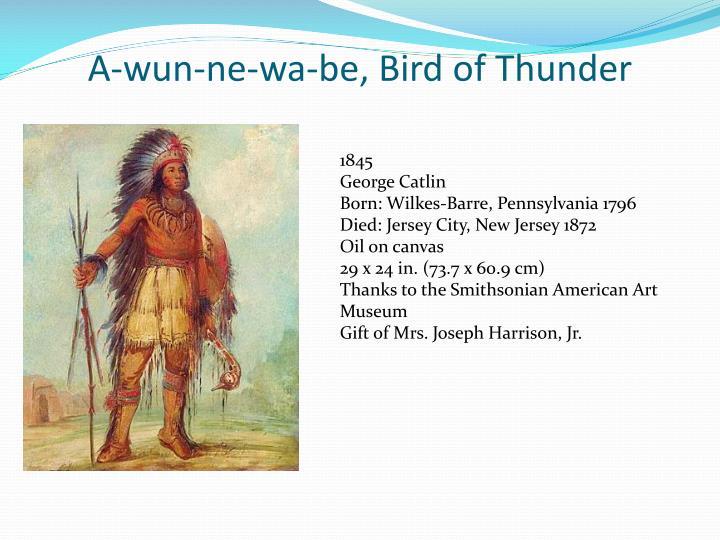 A wun ne wa be bird of thunder