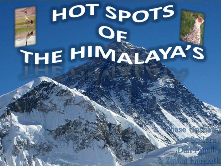 hot spots of the himalaya s n.