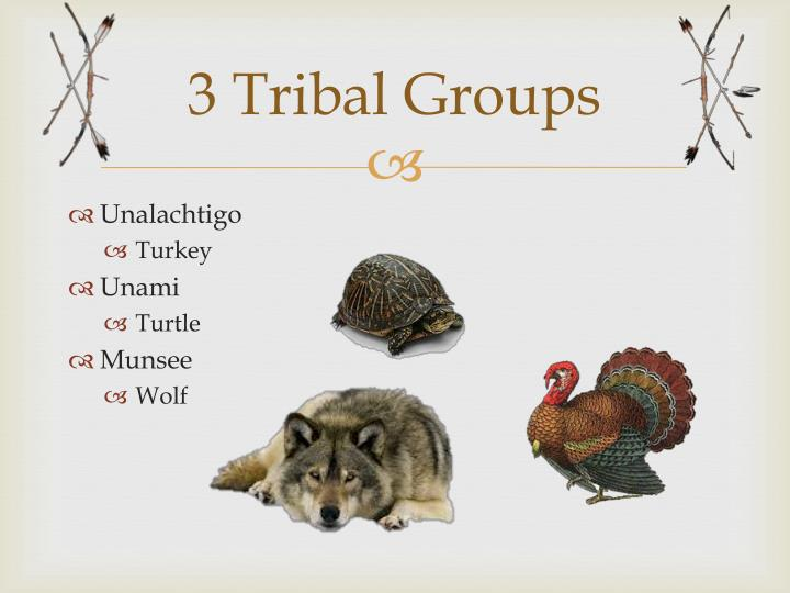 3 tribal g roups