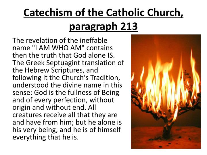 Catechism of the Catholic Church, paragraph 213