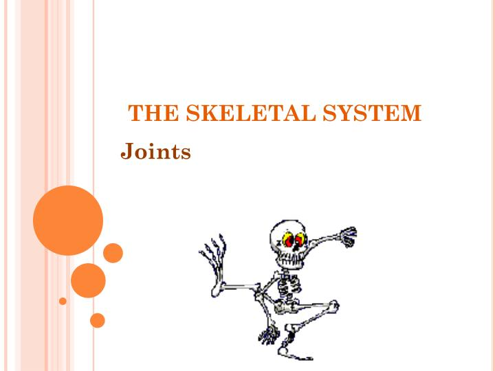 PPT - THE SKELETAL SYSTEM PowerPoint Presentation - ID:2290322