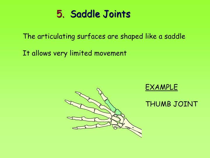 Ppt Joints Powerpoint Presentation Id2290879