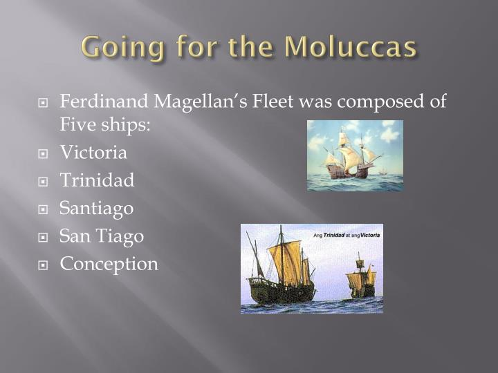 Going for the Moluccas