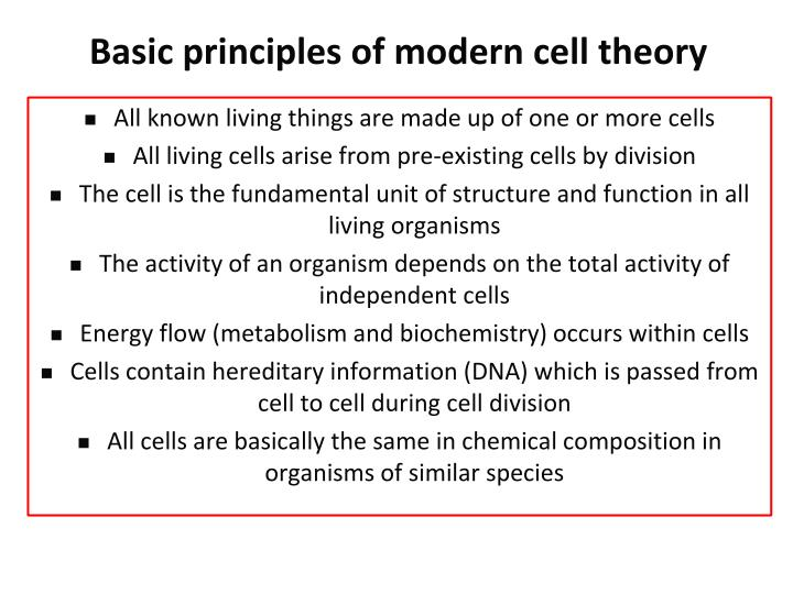 Basic principles of modern cell theory