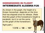 horseshoes in flight intermediate algebra p 26