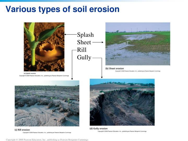 Various Types Of Soil Erosion
