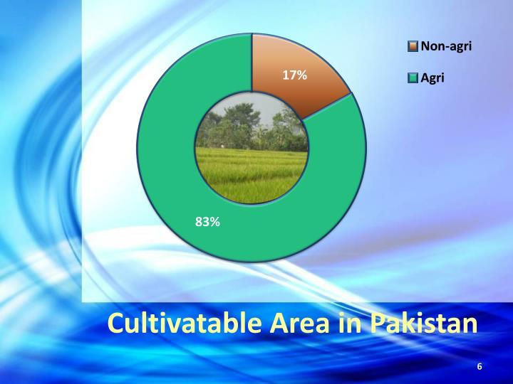 Cultivatable Area in Pakistan