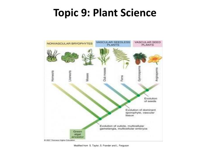 Topic 9 plant science