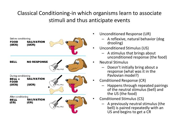 Classical Conditioning-