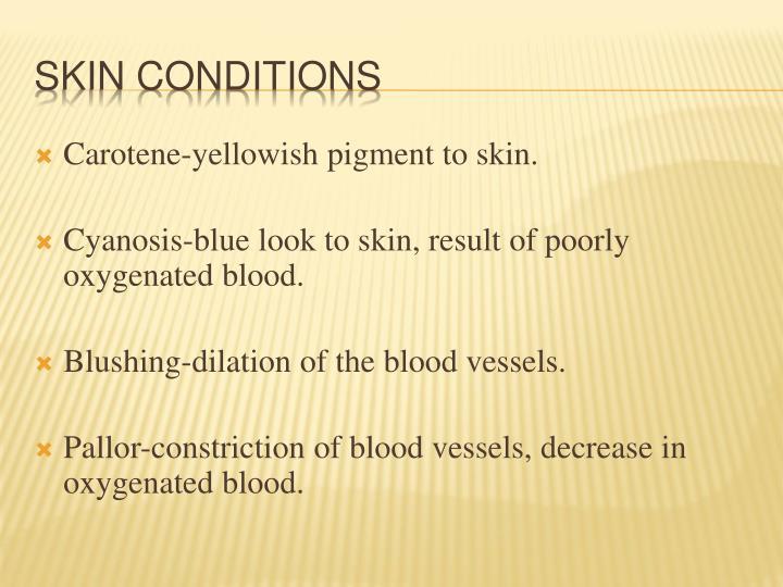 Carotene-yellowish pigment to skin.