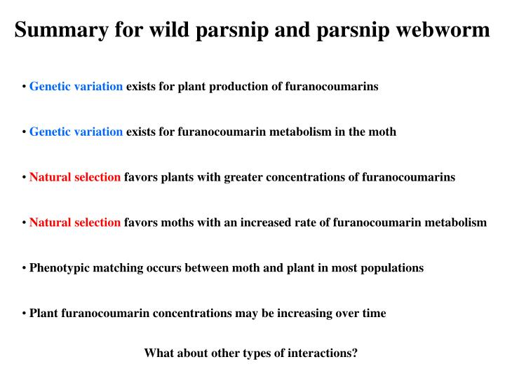 Summary for wild parsnip and parsnip webworm