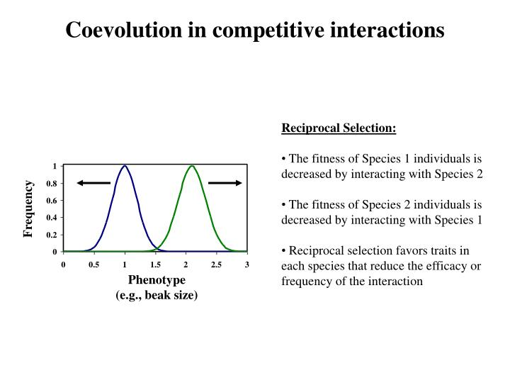 Coevolution in competitive interactions