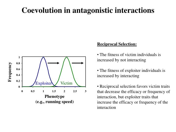 Coevolution in antagonistic interactions