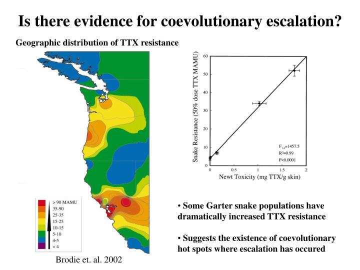 Is there evidence for coevolutionary escalation?