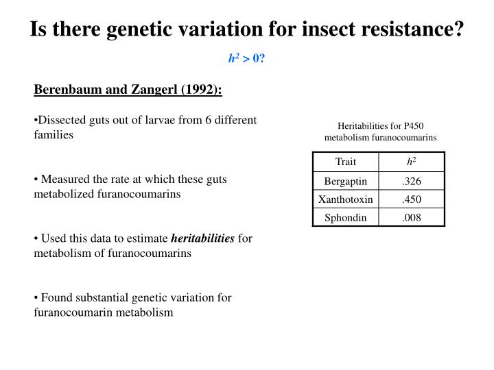 Is there genetic variation for insect resistance?